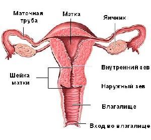 Несостоятельность рубца на матке после кесарева сечения причины развития, лечение