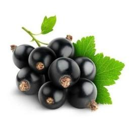 Употребляя черную смородину при грудном вскармливании мама обеспечивает организм нужными витаминами