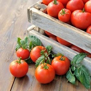 Сбор урожая произведено в деревянные ящики