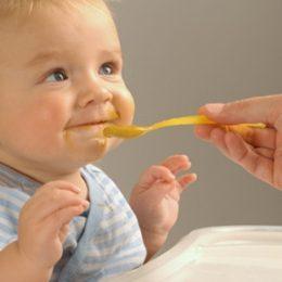 Ответы на самые важные вопросы о прикорме маленьких детей