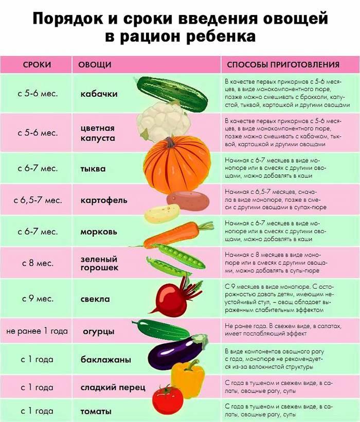 Таблица сроков введения овощного прикорма