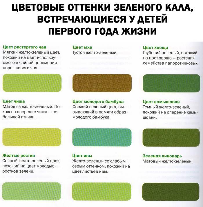Варианты оттенков зеленого цвета испражнений ребенка первого года жизни